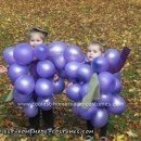 Homemade Bunch of Grapes Costumes