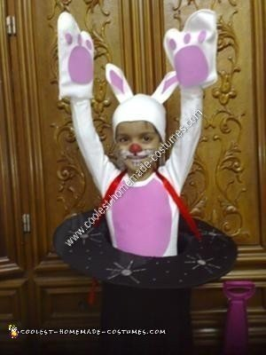 Homemade Bunny in a Magicians Hat Halloween Costume Idea