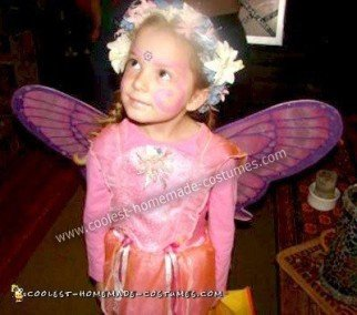 Homemade Butterfly Fairy Princess Costume