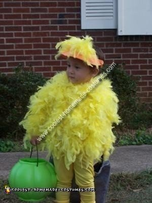 Homemade Chicken Costume