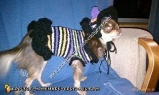 Homemade Chihuahua Dog Witch Costume