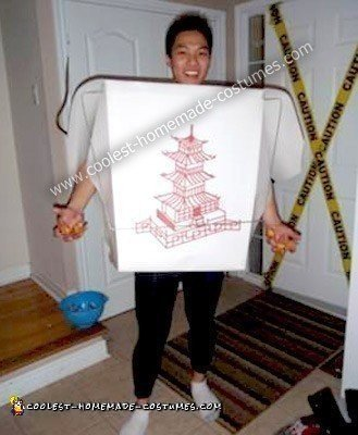 Homemade Chinese Take Out Costume