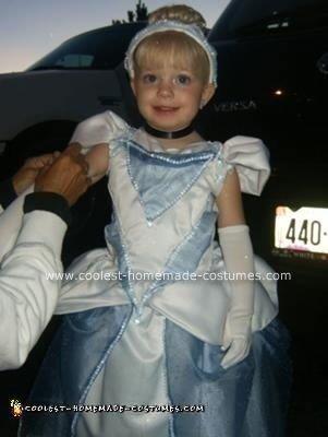 Homemade Cinderella Halloween Costume