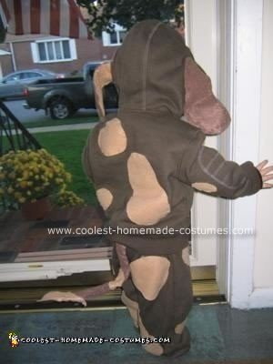 Homemade Dog Costume