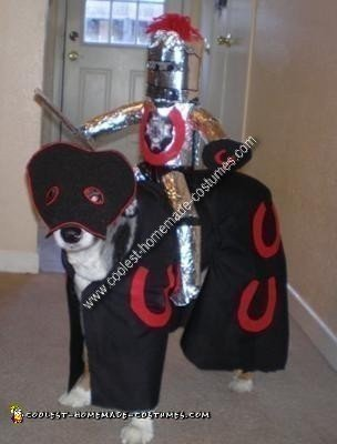 Homemade Dog Costume - Knight and his Horse