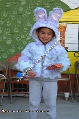 Homemade Dust Bunny Costume