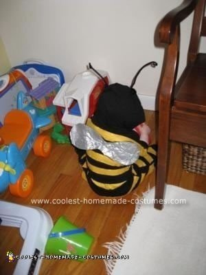 Homemade Flower and Bee Costumes