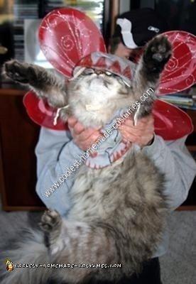 Homemade Flying Monkey Cat Costume