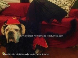 Homemade Flying Monkey from the Wizard of Oz Dog Costume