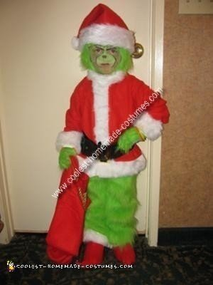 Homemade Grinch Who Stole Christmas Costume