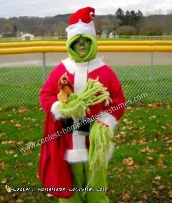 Homemade Grinch Who Stole Halloween Costume