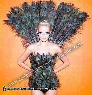 Peacock Costume 3