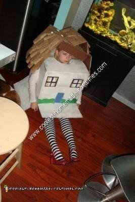 Homemade House That Fell on the Witch of the East Halloween Costume
