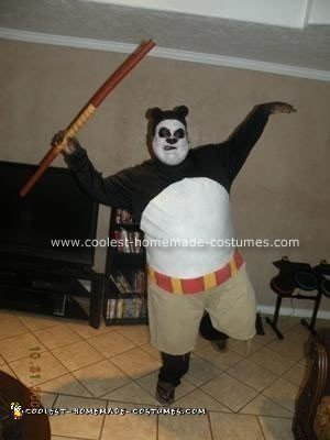 Homemade Kung Fu Panda Costume