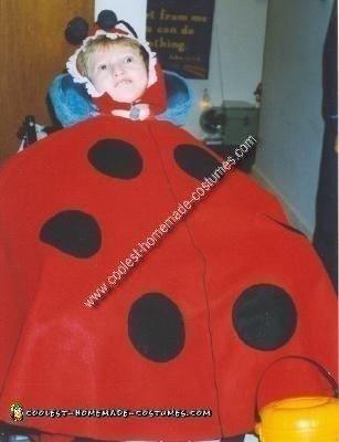 Homemade Ladybug Wheelchair Costume Idea