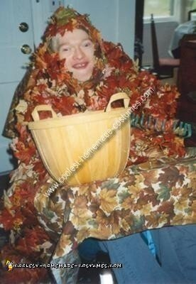 Homemade Leaf Pile Wheelchair Costume
