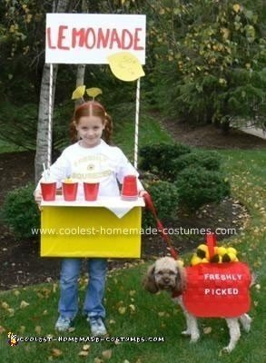 Coolest Homemade Lemonade Stand Costume