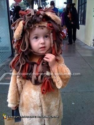 Homemade Lion Costume
