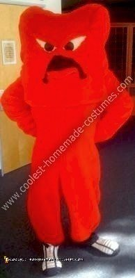 Homemade Looney Toons Gossamer Costume