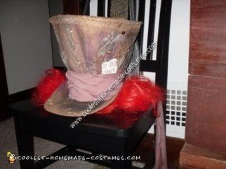 Homemade Mad Hatter Halloween Costume Idea