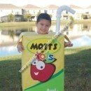 Homemade Mott's Juice Box Costume