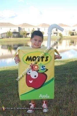 Homemade Mott's Juice Box Costume