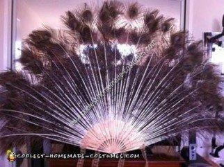 Homemade Peacock Adult Halloween Costume