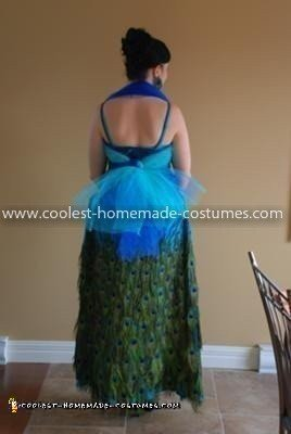 how to make peacock costume at home