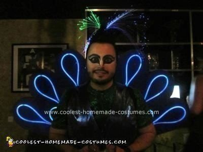 Homemade Peacock DIY Adult Costume Idea