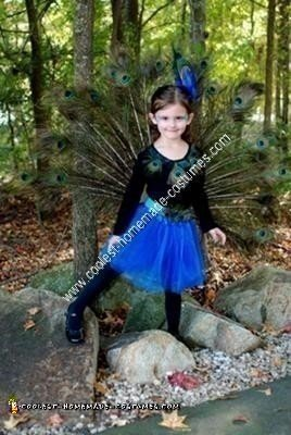 Homemade Peacock Girl's Halloween Costume Idea