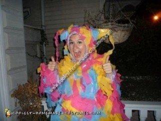 Homemade Pinata Halloween Costume Idea