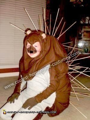 Homemade Playful Porcupine Costume