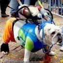 Homemade Scuba Bulldog Costume