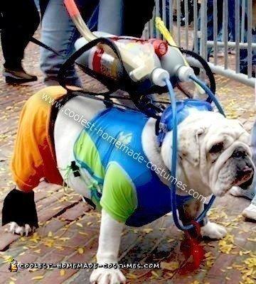Coolest Homemade Scuba Bulldog Costume