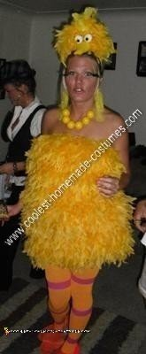 Homemade Sexy Big Bird Halloween Costume Idea