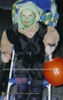 Homemade Shrek Costume