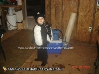 Homemade Skunk Halloween Costume