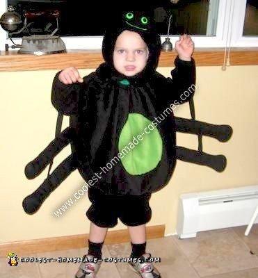 Homemade Spider Boy Costume
