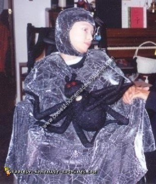 Homemade Spider Web Wheelchair Costume