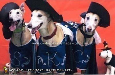Homemade Three Muttsketeers Dog Costume