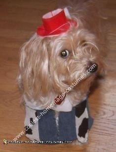 Homemade Toy Story Jessie Child Halloween Costume Idea