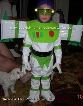 Homemade Toy Story Group Costumes