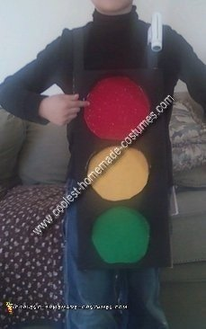 Homemade Traffic Light Costume
