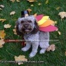 Homemade Turkey Dog Costume