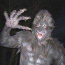Homemade Werewolf Halloween Costume