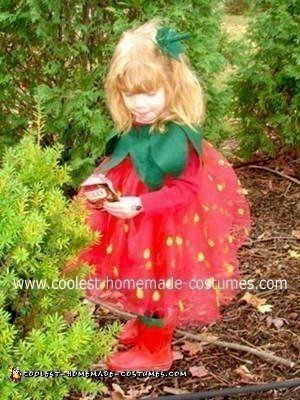 Homemade Wild Strawberry Costume
