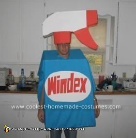 Homemade Windex Man Halloween Costume