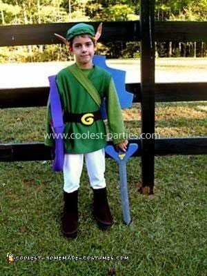 Homemade Link Costume