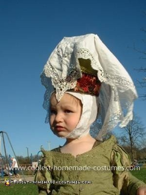 Coolest Medieval Lady Princess Costume