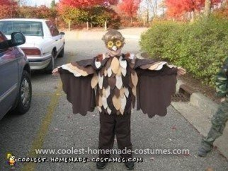 Homemade Owl Costume